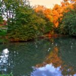 Fishing ponds in autumn